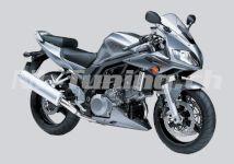 SV 1000 S 03-07