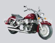 VTX 1300