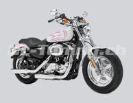 Sportster 1200 Custom XL1200C