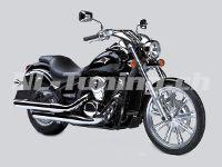 VN 900 Custom