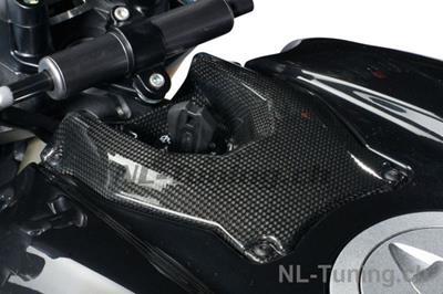 Carbon Ilmberger Zündschlossabdeckung Ducati Streetfighter 1098