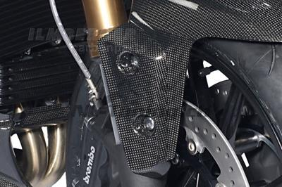 Carbon Ilmberger Flaps am Kotflügel Triumph Speed Triple 1050