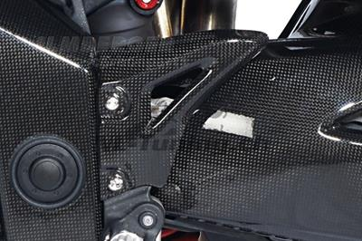 Carbon Ilmberger Fersenschutz Set Triumph Speed Triple 1050