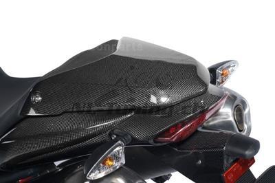 Carbon Ilmberger Soziussitzabdeckung Triumph Speed Triple 1050