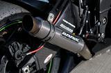 Bodis GP1 Kawasaki ZX-10R