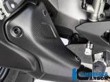 Carbon Ilmberger Auspuffhitzeschutz Ducati Monster 1200