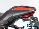 Carbon Ilmberger Soziusabdeckung Ducati Monster 1200