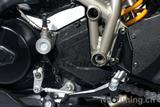 Carbon Ilmberger Ritzelabdeckung Ducati Streetfighter 848