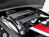 Carbon Ilmberger Luftauslass rechts BMW S 1000 RR