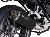 Auspuff Remus Black Hawk BMW R 1250 RS