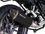 Auspuff Remus Black Hawk BMW R 1250 RS