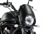 Custom Acces Frontverkleidung Anarchy Yamaha XV 950