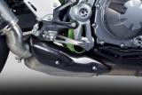 Auspuff Bodis Carbon Abdeckung Kawasaki Z900