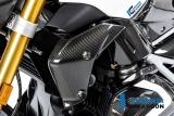 Carbon Ilmberger Wasserkühlerverkleidungen Set BMW R 1250 R