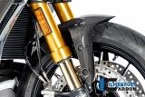 Carbon Ilmberger Vorderradabdeckung Ducati Diavel 1260