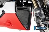 Carbon Ilmberger Öhlkühlerverkleidung Ducati Diavel 1260