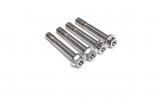 Titan Bremssattelschrauben Set Aprilia RSV 4 1100