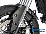 Carbon Ilmberger Vorderradabdeckung hinteres Teil Ducati Hypermotard 950 RVE