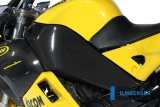 Carbon Ilmberger Rahmenabdeckung Buell 1125 CR / R