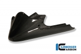 Carbon Ilmberger Motorspoiler lang Buell XB 9 S / SX / SS / R