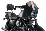 Custom Acces Frontverkleidung Snake Eye Harley Davidson Sportster 883 Iron