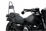 Custom Acces Syssybars Wild Harley Davidson Sportster 883