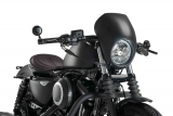 Custom Acces Free Spirit Lampenverkleidung Harley Davidson