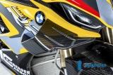 Carbon Ilmberger Original Winglets rechts BMW M 1000 RR