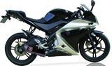 Auspuff Remus Komplettanlage Racing Yamaha R125