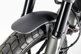 Carbon Ilmberger Vorderradabdeckung Ducati Scrambler