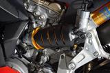 Carbon Ilmberger kleine Federbeinabdeckung Ducati Panigale 899