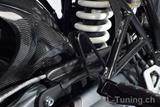 Carbon Ilmberger Bremsleitungsabdeckung BMW R NineT Racer