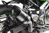 Auspuff Leo Vince LV Pro Kawasaki Z900