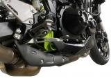 Auspuff Leo Vince Carbon Hitzeschutz Kawasaki Z900