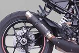 Auspuff Bodis GP1-RSN KTM Superduke R 1290