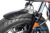 Carbon Ilmberger Kotflügel vorne BMW R NineT Racer