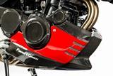 Carbon Ilmberger Motorspoiler BMW F 800 R