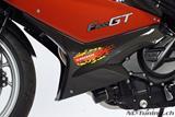 Carbon Ilmberger Verkleidungsunterteilabdeckung Set BMW F 800 GT