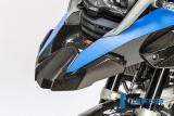 Carbon Ilmberger Schnabelverlängerung vorne BMW R 1200 GS