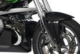 Carbon Ilmberger Ölkühlerabdeckung BMW R 1200 R