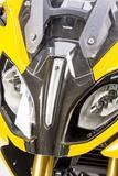 Carbon Ilmberger Verkleidungsmittelteil oben BMW R 1200 RS
