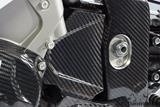 Carbon Ilmberger Ritzelabdeckung BMW S 1000 RR