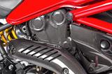 Carbon Ilmberger Zahnriemenabdeckung vertikal Ducati Monster 1200 R