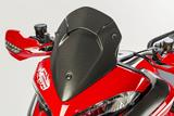 Carbon Ilmberger Windschild Ducati Multistrada 1200