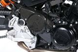 Carbon Ilmberger Antriebsradabdeckung BMW F 800 R