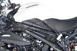 Carbon Ilmberger Seitendeckel Set Triumph Speed Triple 1050